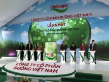 dairy giants make huge investment as vietnam ramps up milk production