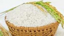 vinh long to host fourth vietnam rice festival next month