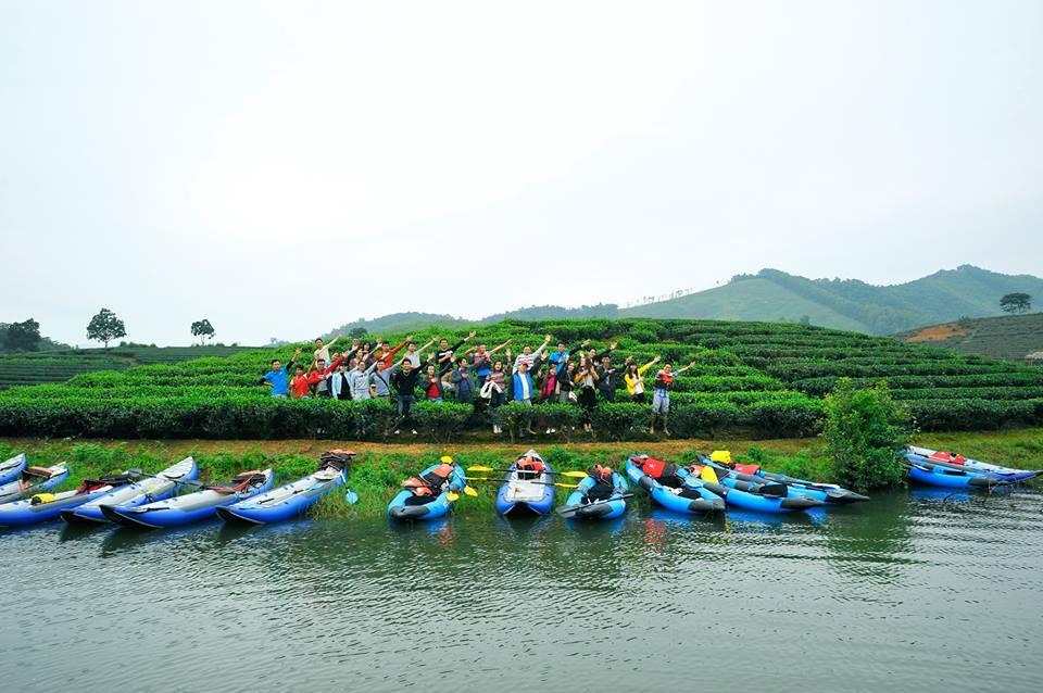 Visiting green tea islands in Nghe An