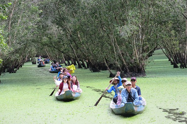 Now Is Best Time To Visit Tra Su Cajuput Forest Vietnam Times