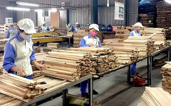 Vietnam Achieves Trade Balance to Gain US's Trust