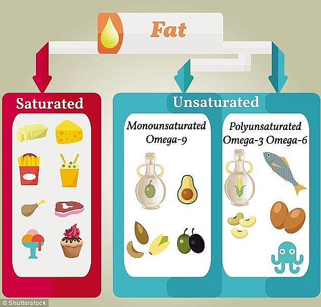 a single meal containing high saturated fat cancause your focus to dwindle study finds