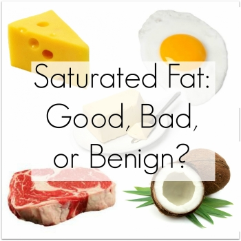 one meal containing high in saturated fat can result in the loss of focus